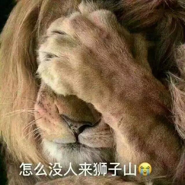 北京野生动物园又出大事