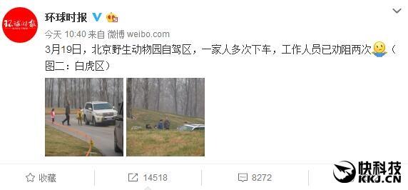 北京野生动物园可怕一幕:一家人随意下车