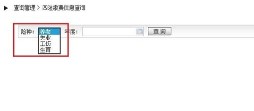 北京的社保怎么查询缴费记录