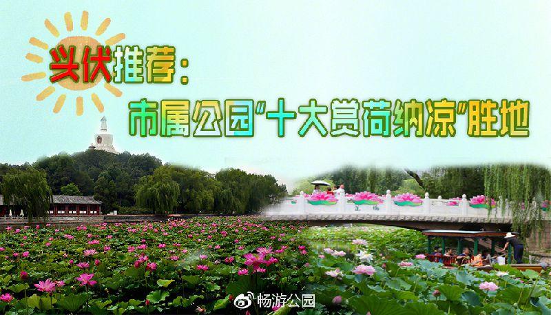 """北京城区消夏公园好去处 """"十大赏荷纳凉""""胜地"""