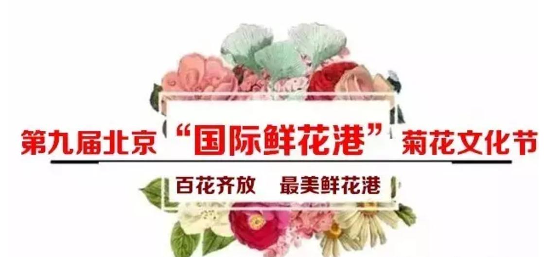 第九届北京菊花文化节门票购买戳这里