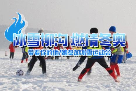 2019年第三届北京延庆柳沟冰雪嘉年华时间+