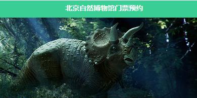 北京自然博物馆将实行分时段预约参观