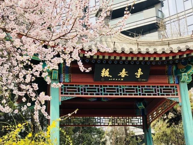 2018陶然亭公园海棠春花文化活动游览路线推荐