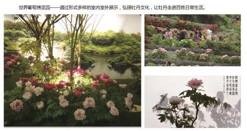 2019首届北京牡丹文化节时间地点门票价格
