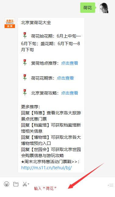 2019北京赏荷攻略