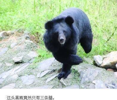 南京浦口珍珠泉动物园