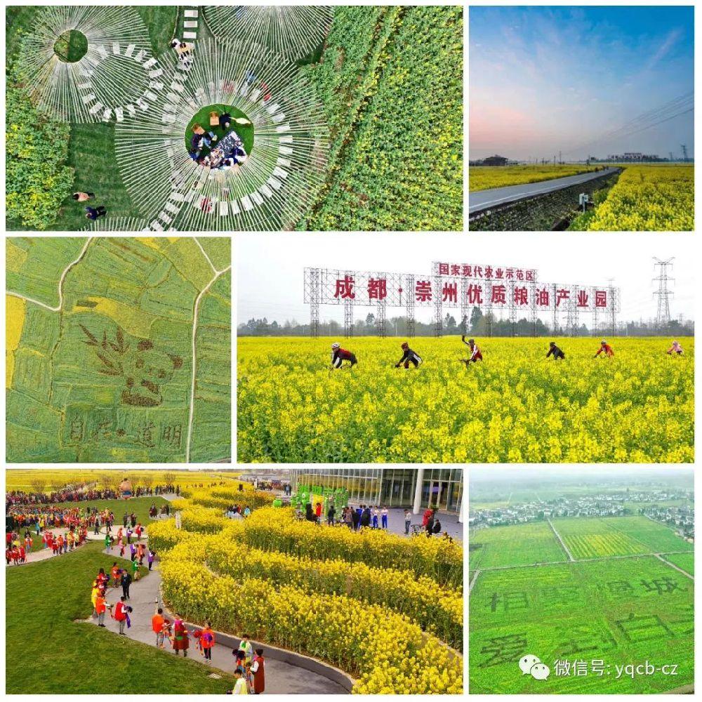 2019年成都第七届自驾赏花节(时间 地点 活动)