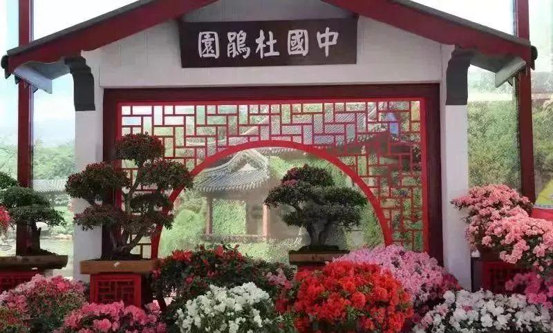 2019成都郫都区紫藤花长廊恐龙文化旅游节(时间 地点 门票)