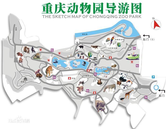 2018重庆动物园六一免票时间,游玩攻略