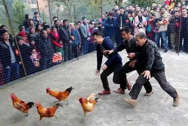 2019重庆合川天龙谷踏青赏花春游大会游玩攻略(时间、活动)