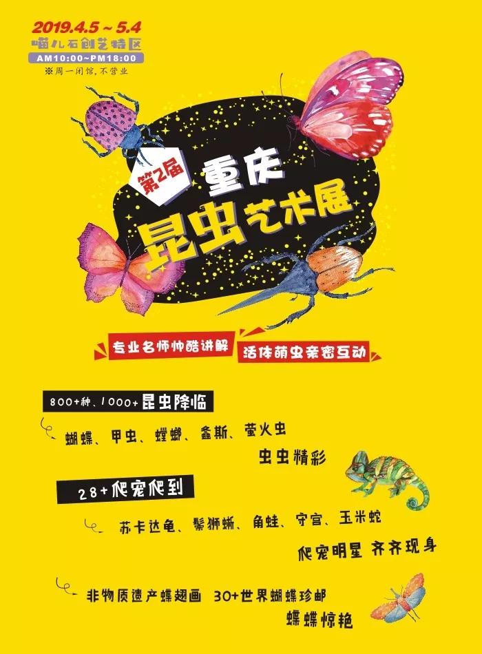 2019重庆昆虫艺术展门票价格及购买方式