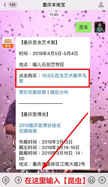 2019重庆昆虫艺术展展区分布