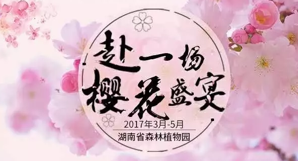 2017长沙樱花节时间、地点、门票