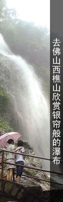 2015清明节广东赏花好去处