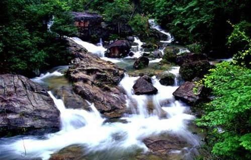流溪河国家森林公园