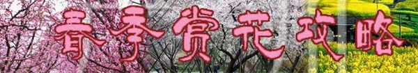 2015年广州赏花全攻略