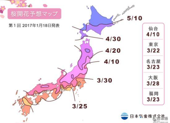 樱前线 赏樱 日本