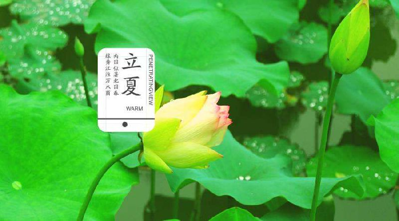 2017立夏是几月几日?广州在4月7日已经入夏