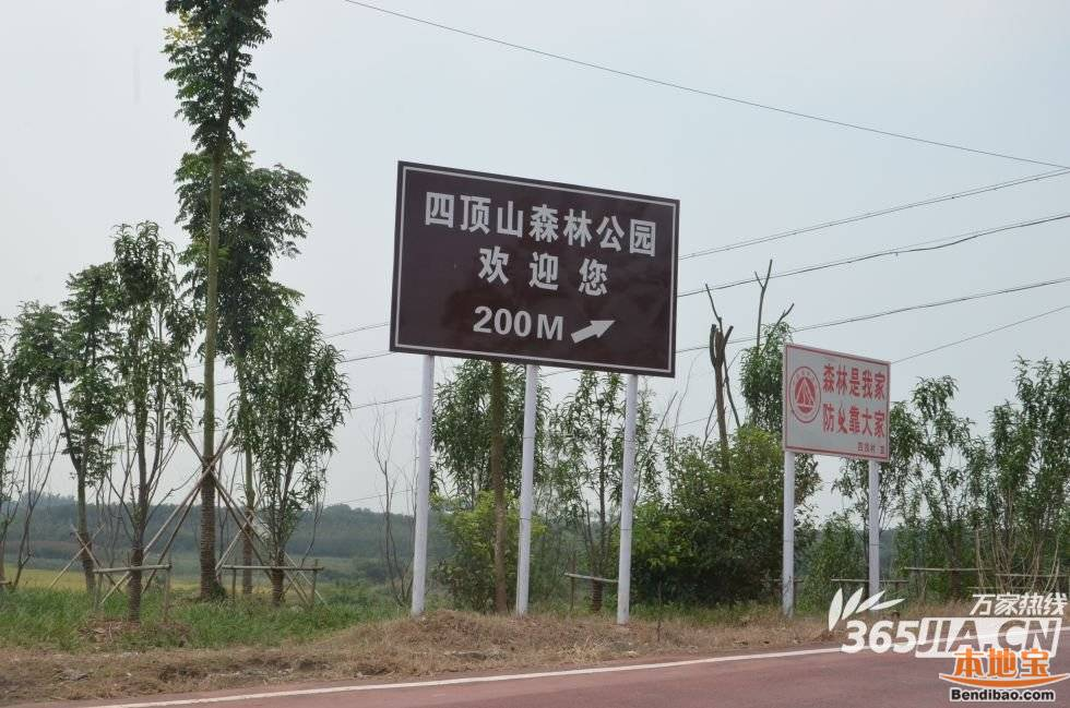 第九个补给站距离四顶山森林公园仅有200米.