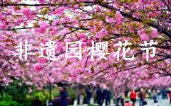 2017年合肥非遗园樱花节时间、地点、门票