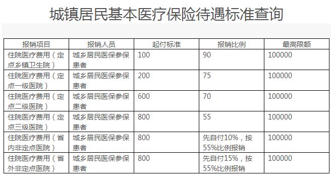 衡阳城镇居民基本医疗保险待遇标准查询