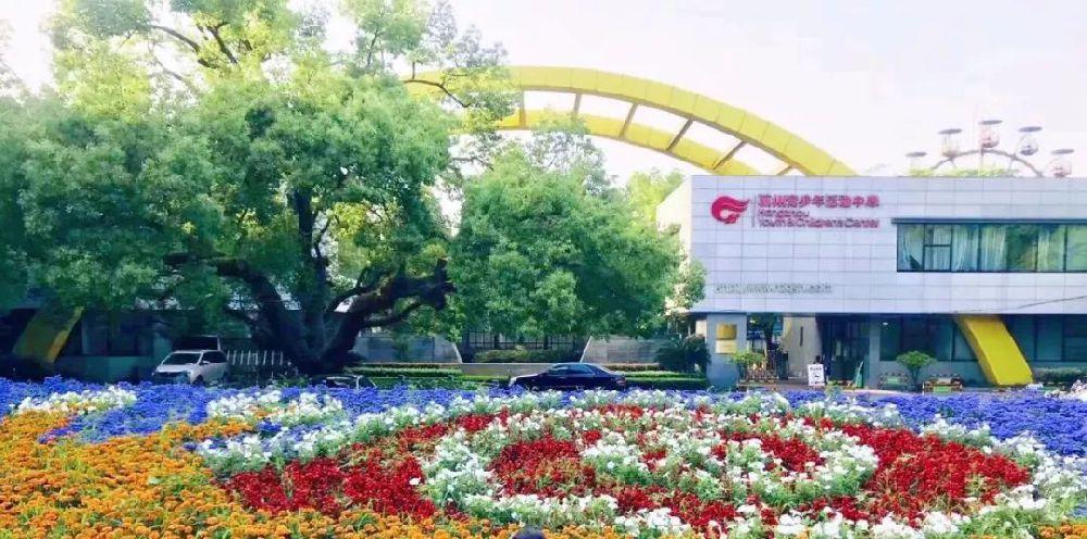 杭州青少年中心暑秋报名入口