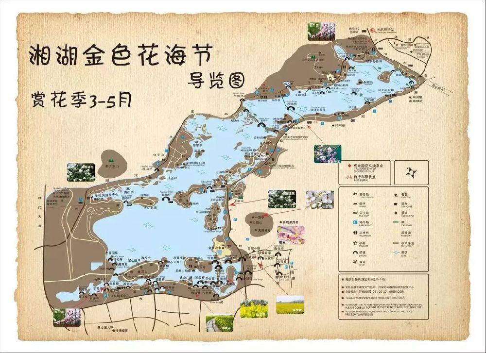 2019湘湖金色花海节时间、地点、门票