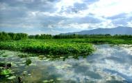北京翠湖湿地公园游玩攻略