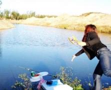 钓鱼的鱼食怎么做