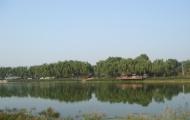 北京稻香湖湿地公园攻略