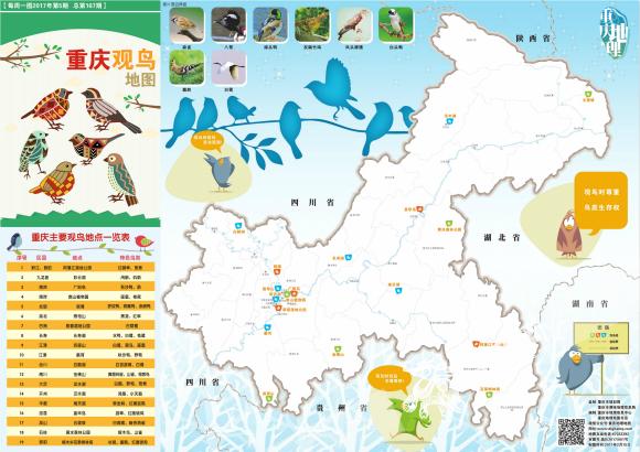 《重庆观鸟地图》:现在正是观鸟的好时机