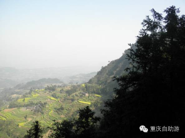 踏青赏花、爬山逛古镇,重庆这一个地方全搞定!