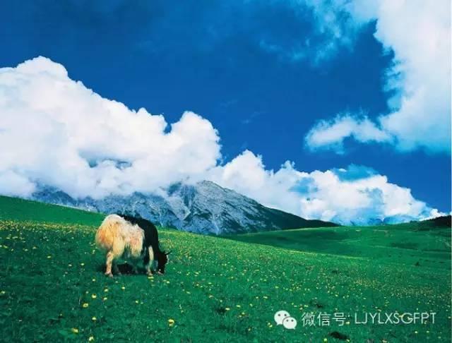 玉龙雪山周边景点怎么去