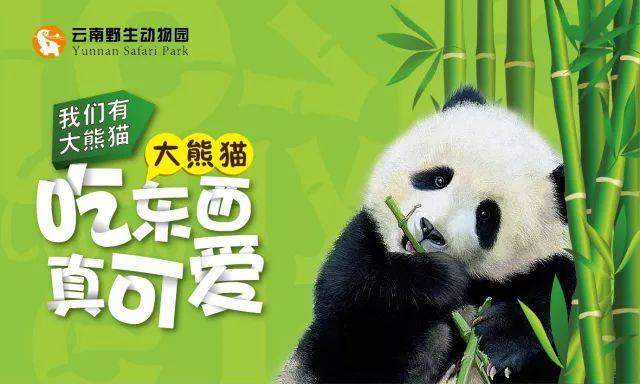 2018云南野生动物园三八节门票优惠活动