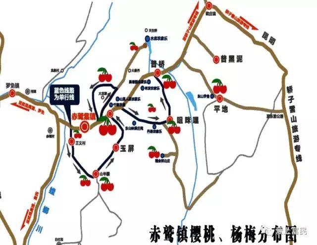 2019富民摘杨梅地图(附电话)