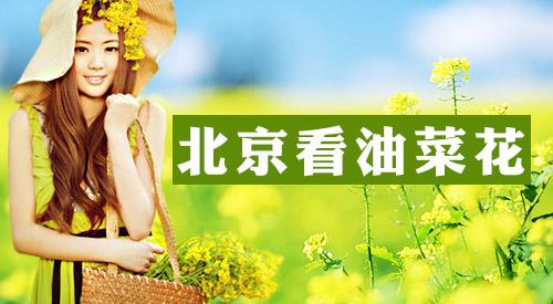 2014北京植物园桃花节时间门票及交通指南(图)