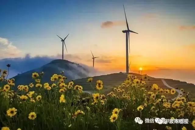 宁波6条绝美风车公路游玩攻略