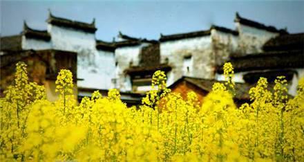 中国最美古镇盘点  江西婺源如画