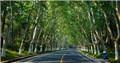 盘点南京十条绿道 骑行散步好去处