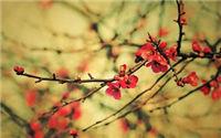 南京冬季旅游好去处