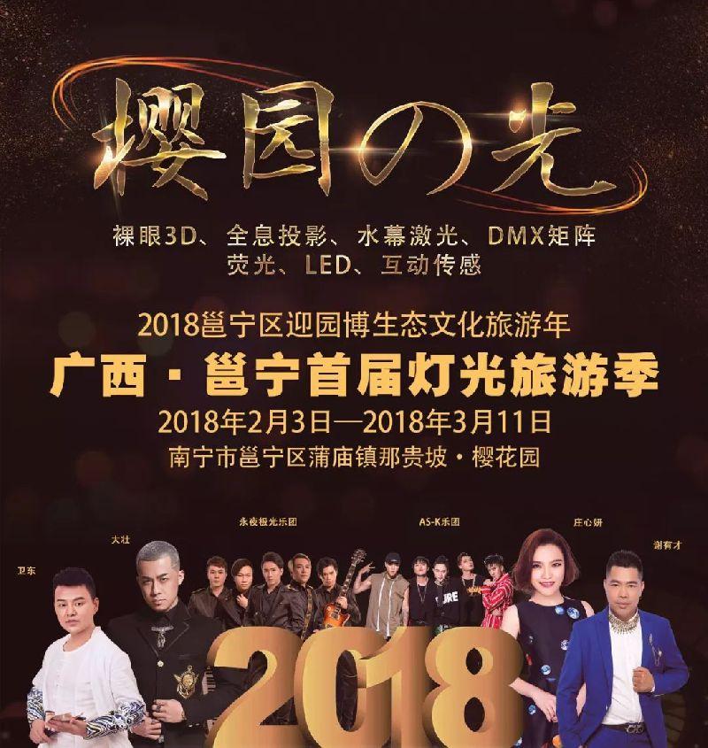 2018南宁樱花园灯光节活动