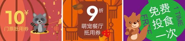 泉州元宵旅游推荐-海丝野生动物世界
