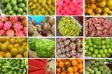 三亚特产:热带水果