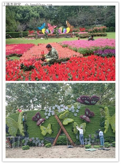 2014国庆上海动物园蝴蝶展开幕