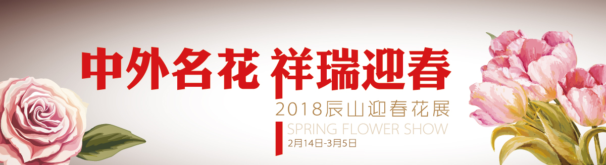 2018上海辰山植物园迎春花展