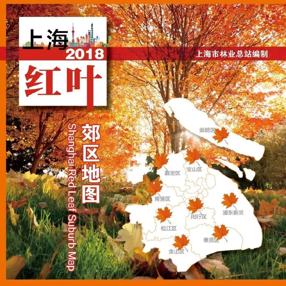 上海郊区红叶地图发布 探寻申城秋色之美