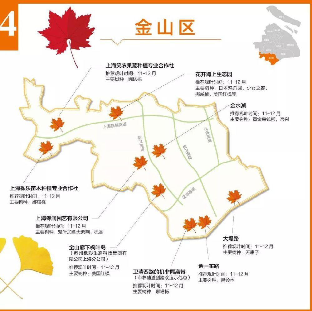 盘点上海郊区赏红叶地图指南 这些美景不容错过