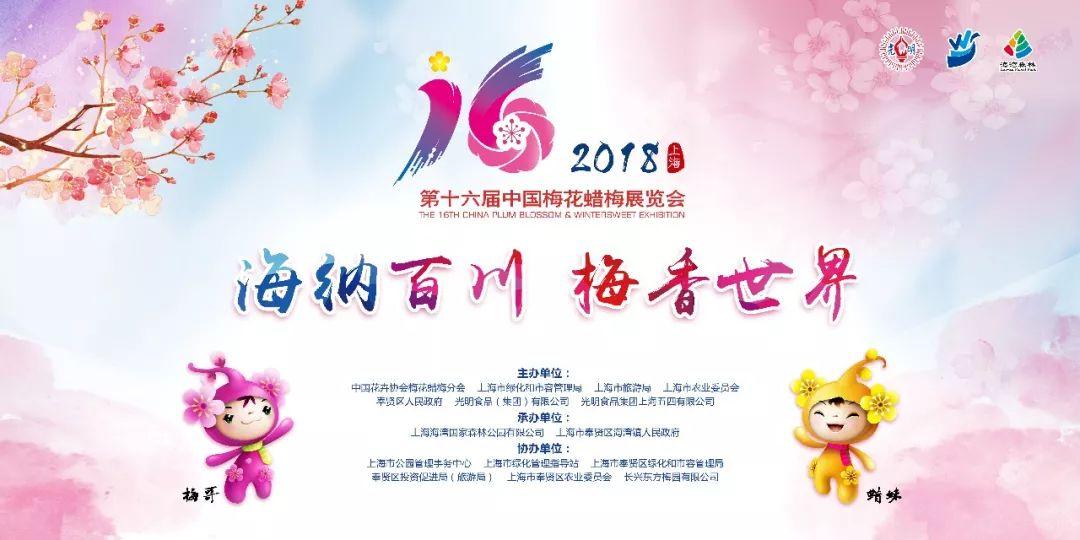 2018上海梅花节开幕 赏梅指南公布