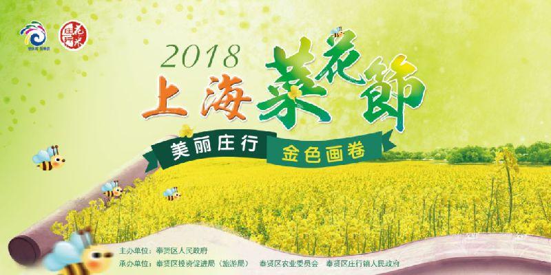 2018上海奉贤菜花节时间+地点+门票+交通